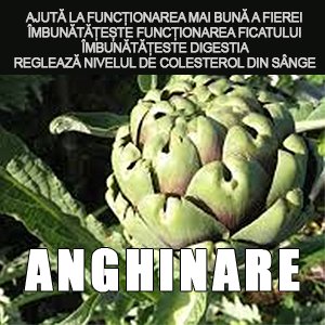 Extract de anghinare